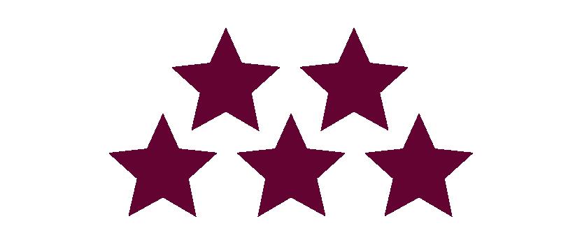 chc 05 stars burg